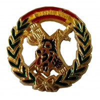 Pin Guardia Civil Emblema...