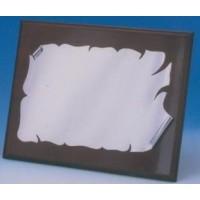 Placa Aluminio Brillo 1303
