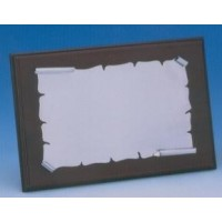 Placa Aluminio Brillo 1306