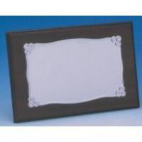 Placa Aluminio Brillo 1310