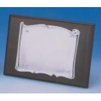 Placa Aluminio Brillo 1315