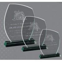 Metopa Cristal Forma con estuche Grabado Laser